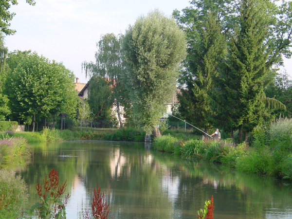 Eckbolsheim (étang de pêche)