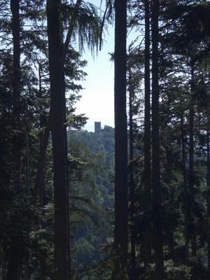 La tour du Haut-Ribeaupierre